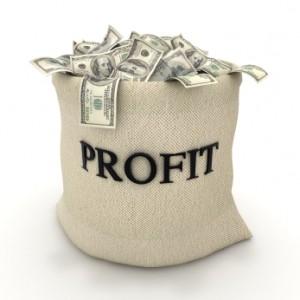 increasing-your-profits-through-videos-300x300